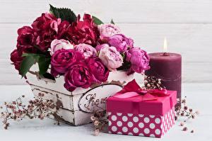 Фотографии Роза Букет Свечи Коробка Подарков Бантик Цветы