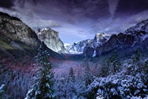 Картинки Пейзаж Леса Америка Зимние Парк Снега Йосемити Природа
