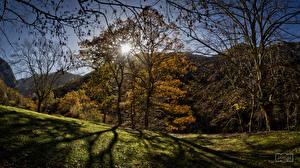 Фотографии Испания Горы Осенние Деревья Солнце Asturias Природа