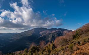 Фотография Испания Гора Небо Облачно Дерево Catalonia Природа