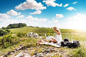 Картинки Лето Поля Небо Трава Пикник Блондинка Шляпы Сидит
