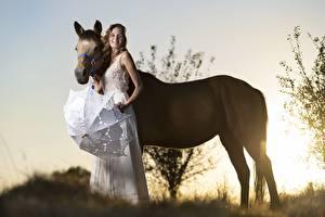 Фотографии Рассветы и закаты Лошадь Вдвоем Улыбка Зонтом