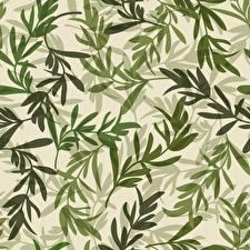 Обои Текстура Ветвь Лист Зеленый Природа