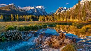 Фотография США Горы Лес Река Пейзаж Плотине Sawtooth National Forest Природа
