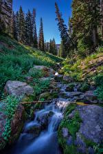 Фото США Камни Мха Ель Ручей Utah