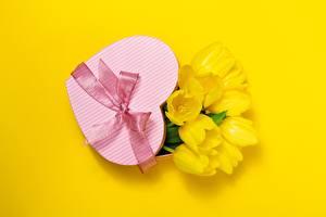 Фотографии День святого Валентина Тюльпаны Цветной фон Сердце Бант Подарки Цветы