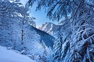 Обои Зима Горы Австрия Снег Альп