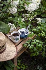 Картинка Йогурт Черника Чай Ветвь Чашка Миска Продукты питания