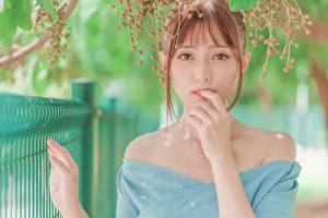 Картинки Азиаты Ягоды Боке Рыжая Рука Взгляд Девушки