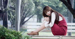 Обои для рабочего стола Азиатки Боке Скамья Шатенка Сидящие молодая женщина