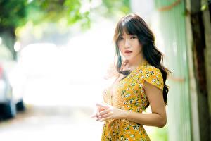 Фотография Азиаты Размытый фон Шатенка Рука Смотрит Платья молодая женщина
