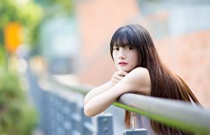 Обои Азиатки Боке Шатенка Руки Смотрит Волос девушка