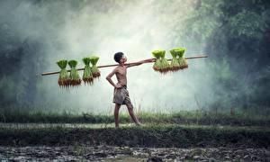 Обои для рабочего стола Азиатка Мальчишка Тумане Поза Работают ребёнок