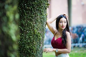 Фото Азиатки Брюнетки Позирует Ствол дерева Смотрит Боке девушка