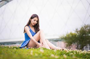 Обои Азиаты Платье Ноги Сидит Размытый фон Девушки картинки