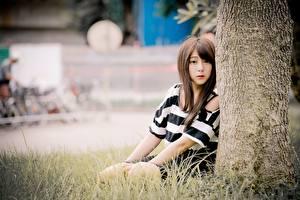 Фотография Азиатка Трава Боке Шатенки Сидя Смотрят девушка