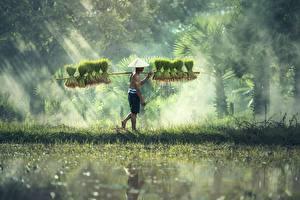 Обои Азиатки Мужчина Тумане Шляпы Работает