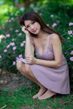 Фотографии Азиатки Сидящие Платья Смотрит Шатенки девушка