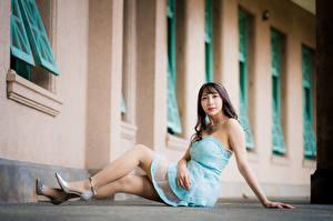Обои Азиатки Сидит Платья Ноги Смотрит молодые женщины