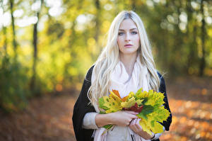 Фото Осенние Блондинка Листья Взгляд Боке Julia молодая женщина Природа