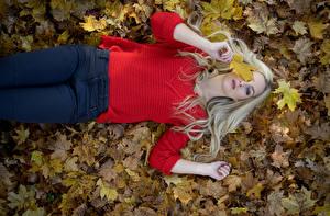 Фотография Осень Листья Блондинок Свитере Джинсов Лежа Взгляд Julia молодые женщины Природа