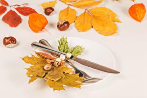 Обои Осень Нож Каштан Тарелке Вилка столовая Листья Природа