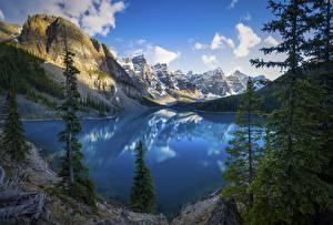Картинка Канада Парк Гора Озеро Пейзаж Дерево Утес Облачно Банф Alberta Природа