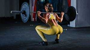 Картинки Фитнес Штанга Спины Попа Тренировка Приседания спортивные Девушки