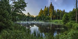 Фото Германия Лес Озеро Бавария Траве Augsburg Природа