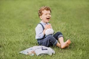 Картинка Траве Мальчишка Сидя Смех Радость Размытый фон Дети
