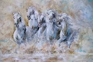 Картинки Лошадь Картина Бежит Белая животное