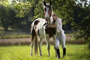 Картинка Лошади Объятие Униформе colt male животное Девушки