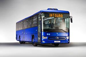 Фотография Mercedes-Benz Автобус Синих Intouro M, 2020 Автомобили