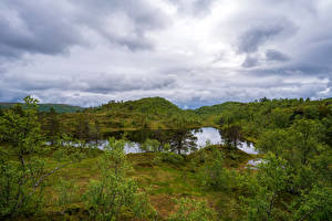 Фото Норвегия Парк Деревья Облака Sjunkhatten National Park