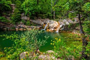 Обои Испания Лес Камни Ручеек Catalonia Природа