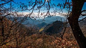 Картинки Испания Горы Деревья На ветке Santa Maria de Besora Природа