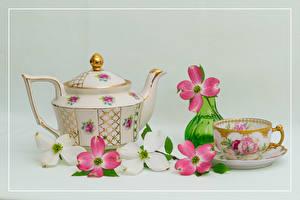 Картинки Натюрморт Чайник Цветущие деревья Сером фоне Чашке Вазе Ветки цветок