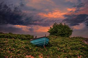 Фотография Швеция Рассвет и закат Лодки Небо Трава Кусты Облачно Degeberga Природа