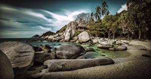 Картинка Таиланд Берег Море Камни Пальма Koh Tao