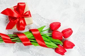 Фото Тюльпаны Подарки Цветы