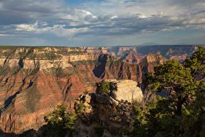 Фото США Парк Гранд-Каньон парк Каньоны Скала Arizona Природа