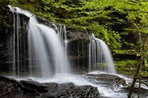 Фото Штаты Парки Водопады Скала Ricketts Glen State Park
