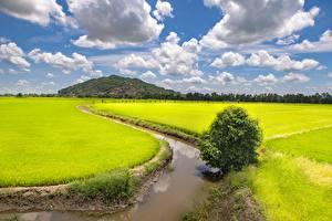 Фотографии Вьетнам Поля Водный канал Облака Trung Khanh District, Cao Bang (province) Природа