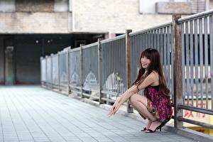 Обои Азиатка Забором Шатенки Сидит Улыбка Боке молодая женщина