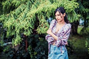 Фотографии Азиаты Поза Блузка Декольте Брюнеток девушка