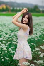 Картинки Азиаты Поза Платье Рука Взгляд молодая женщина