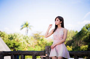 Обои для рабочего стола Азиатки Поза Платье Руки Взгляд молодые женщины