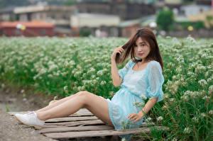 Картинка Азиаты Сидит Платья Ноги Взгляд девушка