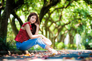 Фотографии Азиаты Сидящие Джинсов Блузка Шляпа Взгляд Размытый фон Девушки