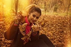 Фото Осень Листва Сидя Взгляд Размытый фон молодые женщины